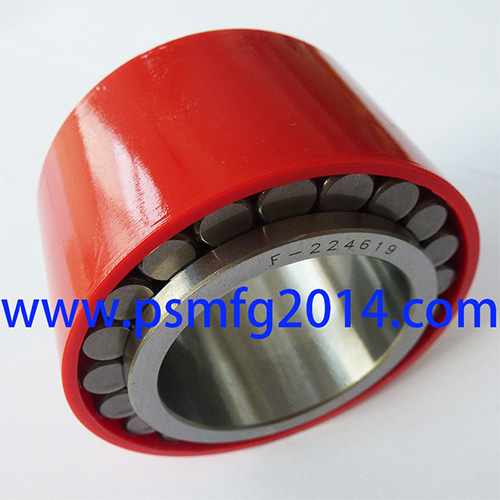 F-224619 Gearbox Bearings