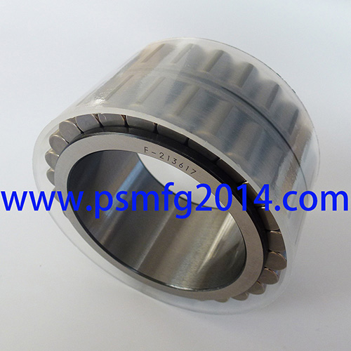 F-213617 Hydraulic Pump Roller Bearings