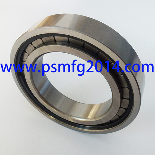 CBK238 MF Tractor Transmission Bearings